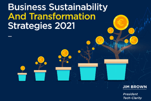 Business Sustainability and Transformation Strategies (survey results)